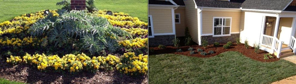 Beautifying the Carolinas One Lawn at a Time